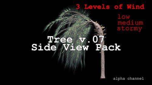 Tree v. 07 Side View Pack