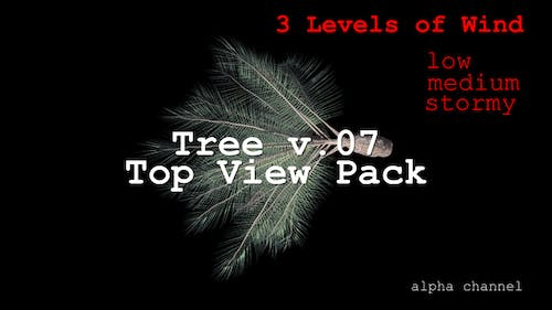 Tree v. 07 Top View Pack