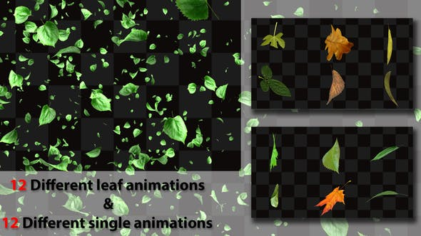 Cover Image for Leaf Package