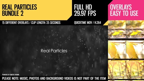 Thumbnail for Real Particles Bundle 2 (Heavy Particles)