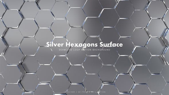 Thumbnail for Silver Hexagons Surface