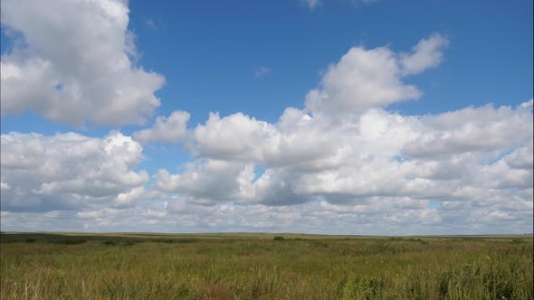 Thumbnail for Summer Landscape with Field of Grass,blue Sky . Green Grass Field Landscape with Fantastic Clouds in