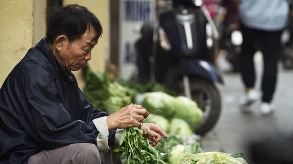 Cover Image for Handheld view of Vietnamese man selling herbs in the street. Shot with RED helium camera in 8K