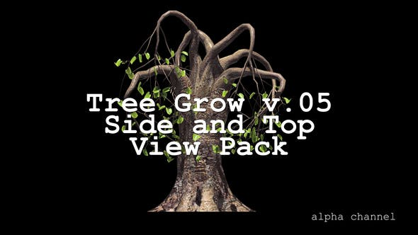Thumbnail for Tree Grow v. 05 Side and Top View Pack