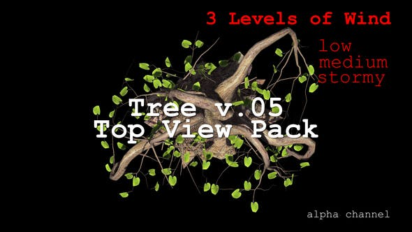 Thumbnail for Tree v. 05 Top View Pack