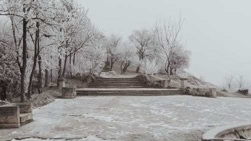 An Ancient Staircase in Elizavetinsky Park A Dull Winter Day