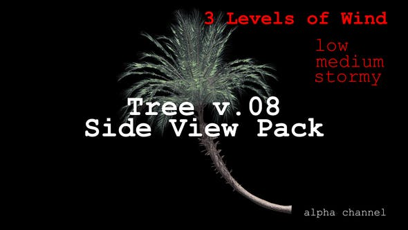 Thumbnail for Tree v. 08 Side View Pack