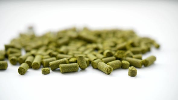 Concept Hops in Granules for Brewing at the Brewery.