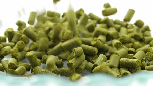 Thumbnail for Concept Hops in Granules for Brewing at the Brewery