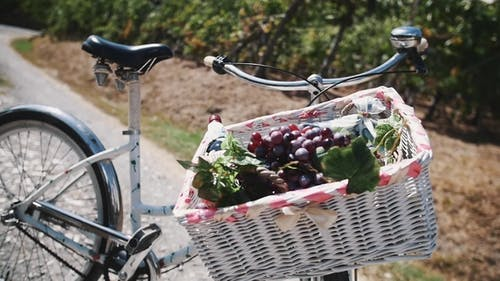 Wicked Basket with Vine and Grapes on Bicycle on Road Near Vinery