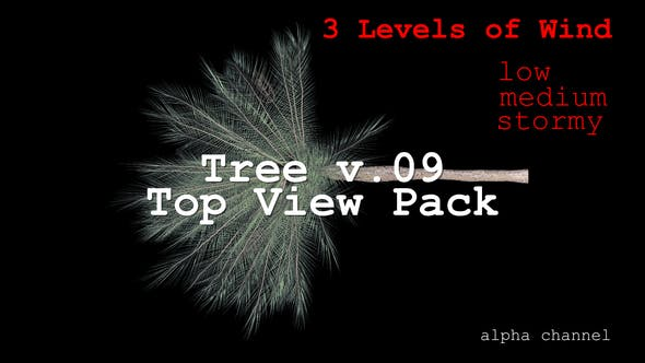 Thumbnail for Tree v. 09 Top View Pack