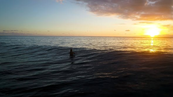 Thumbnail for Girl Relaxing Sitting at Surfboard
