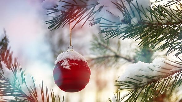 Thumbnail for Christmas Ball Hanging on a Festive Christmas Tree.