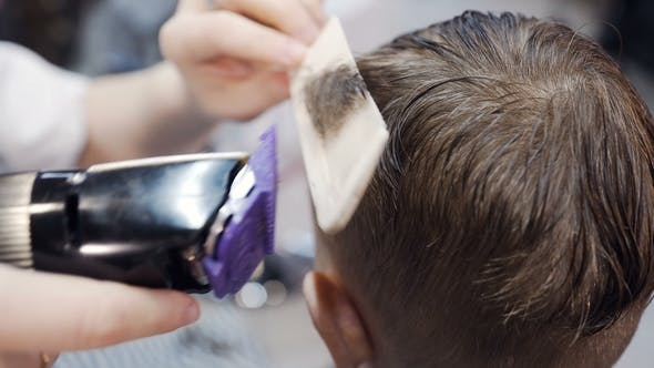 Thumbnail for Professional Hairdresser Doing a New Haircut on Wet Hair