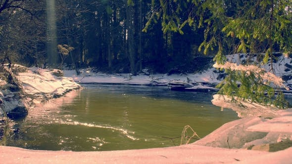 Thumbnail for Forest River in Early Spring