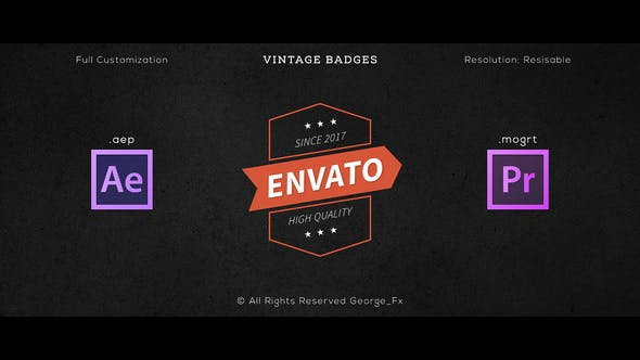 Thumbnail for 16 Vintage Badges