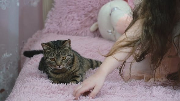 Thumbnail for Girl with a Cat on the Couch