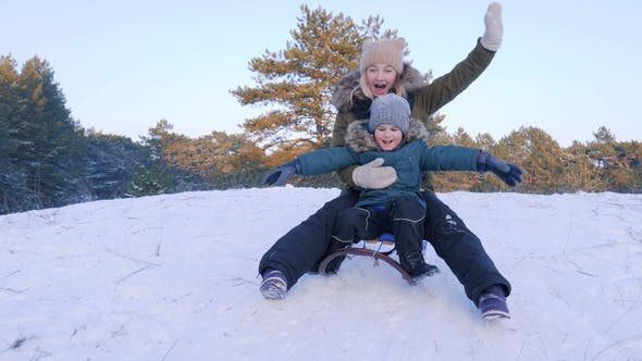 Cover Image for Happy Family on Sledge Rides from Snowy Hill in Forest