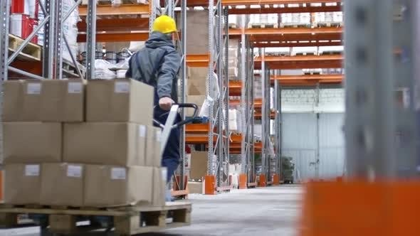 Thumbnail for Male Worker in Factory Warehouse