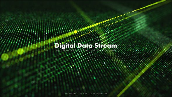 Thumbnail for Digital Data Stream 3
