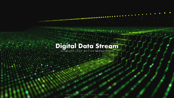 Thumbnail for Digital Data Stream 2