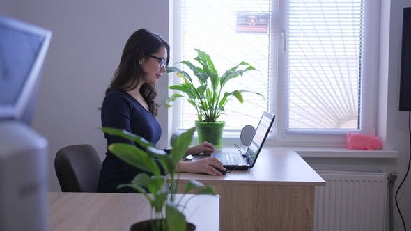 Thumbnail for Successful Woman Working with Laptop on Desk Indoors near Window and Indoor Flowers