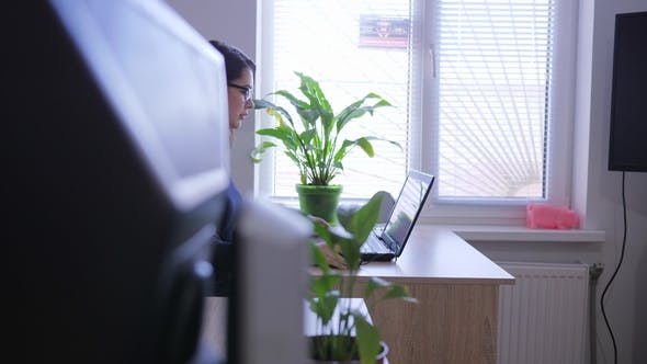 Thumbnail for Young Woman with Laptop at Job near Window and Indoor Plants
