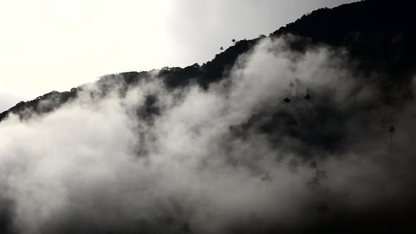 Thumbnail for Mist Over Mountains