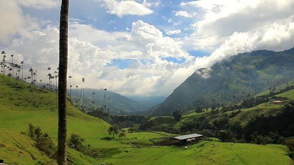Cover Image for Colombian Landscape