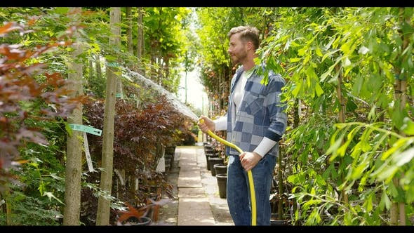 Thumbnail for Man Spraying Green Plants in Garden