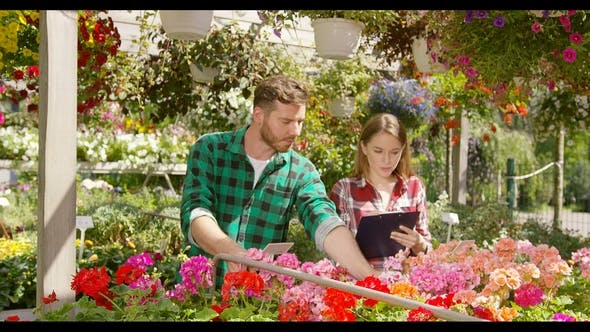 Thumbnail for Coworkers Accounting Flowers for Sale