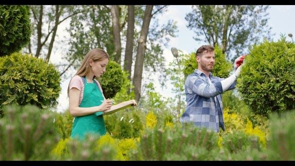 Thumbnail for Woman and Man Exploring Plants in Botanic Garden