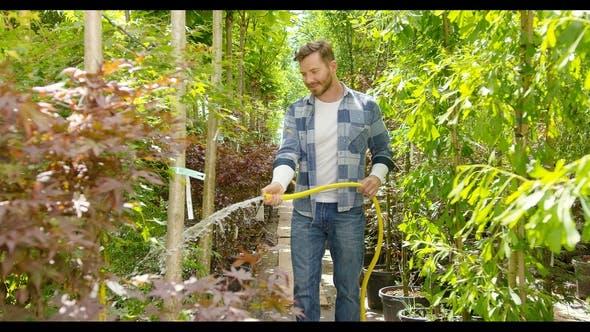Thumbnail for Inhalt Mann Sprühpflanzen mit Wasser