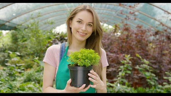 Thumbnail for Content Girl Holding Green Plant