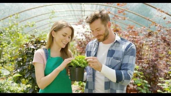 Thumbnail for Romantic Couple with Green Plant in Hothouse