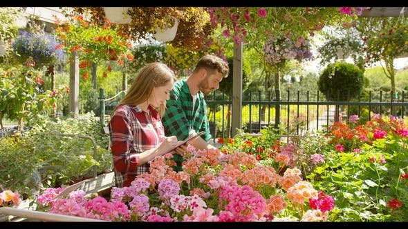 Thumbnail for Man and Woman Working in Garden