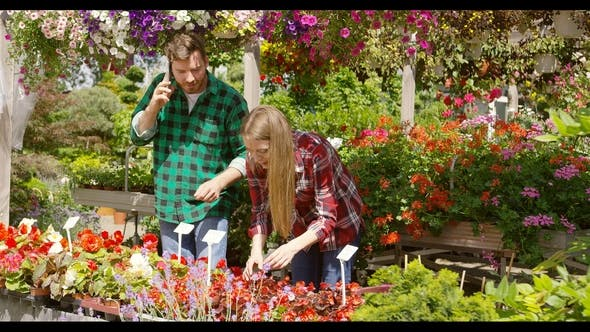 Thumbnail for Couple Having Business of Floral Garden