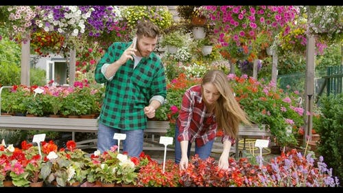 Couple Coworking in Blooming Garden