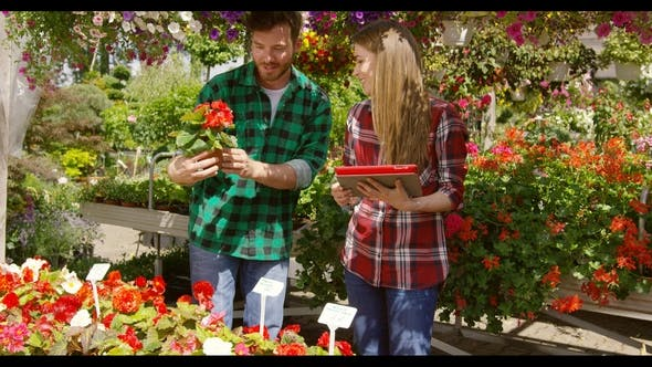 Thumbnail for Content Couple Accounting Flowers
