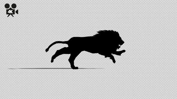 Thumbnail for 4K Lion Running Silhouette
