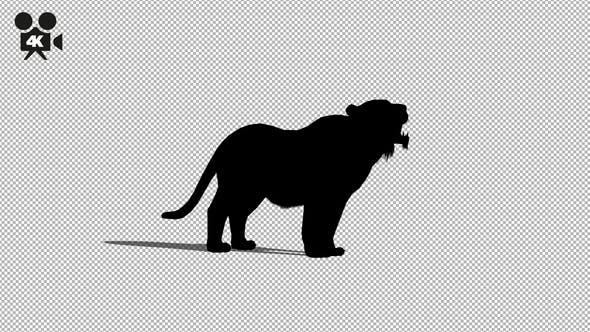 Thumbnail for 4K Lion Howl Silhouette