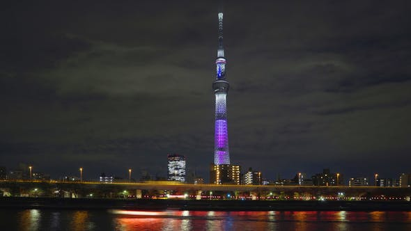 Thumbnail for Skytree