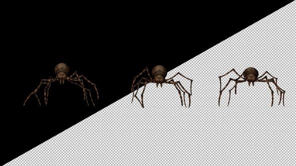 Thumbnail for Spider Walk