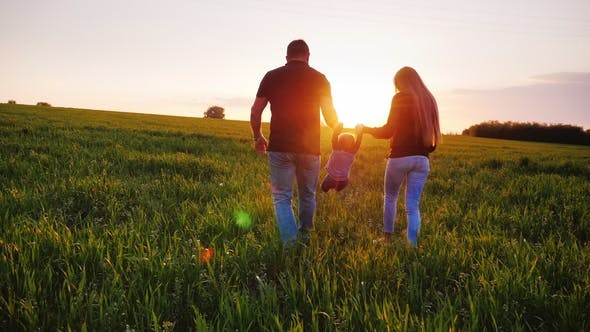 Cover Image for Rear View: A Happy Couple of Parents with a Small Son Are Walking Across the Field Towards the