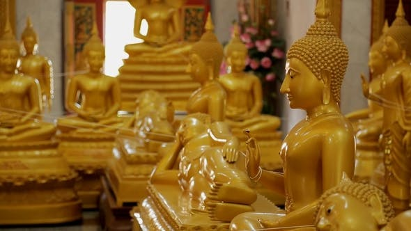 Thumbnail for Buddha Statues Stand in Buddhist Temple in Background of Window and Flowers, Golden Figures Are in