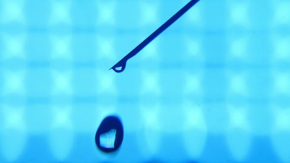 Thumbnail for A Bead of Water Grows on a Tip of a Slanting Needle and Falls in a Lab.
