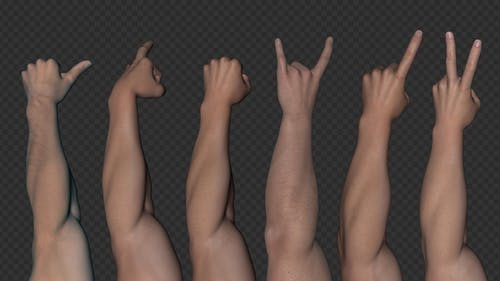 Event Hands - White Male - Pack of 6