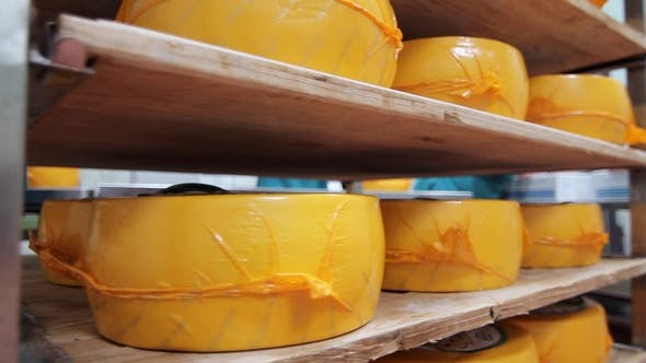 Thumbnail for Packaged Cheese Wheels on Shelves in Factory Warehouse Cheese Production