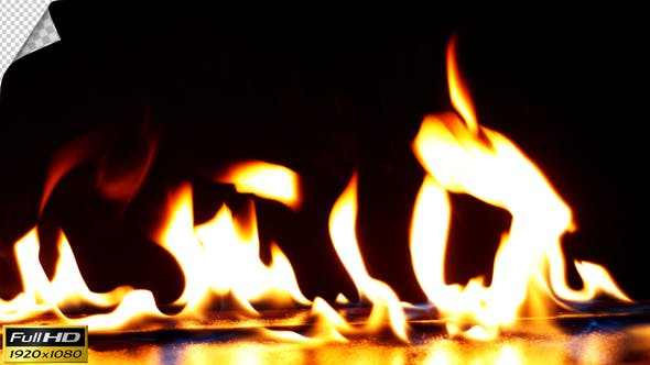 Thumbnail for Realistic Fire Line in Slow Motion - Alpha Channel v.2
