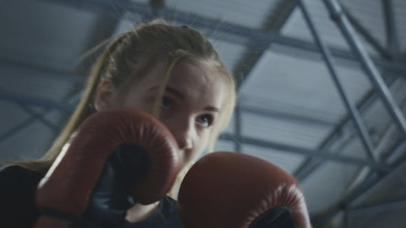 Cover Image for Boxing Woman Training with Coach on Ring